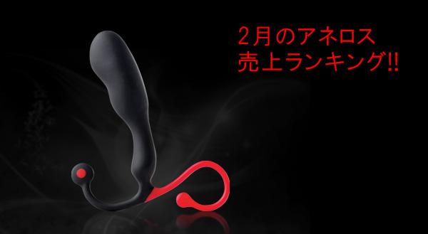 2018年2月のアネロス売上ランキング!!