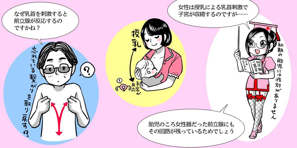 乳首と前立腺